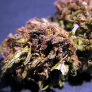 Grape Ape Hemp Flower