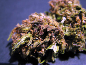 Grape Ape CBD Flower