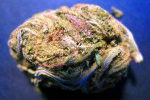Green Crack CBD Hemp Flower